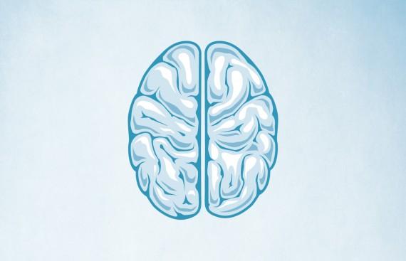 Alzheimer's Awareness Campaign alz featured 570x367
